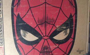 spidermanbox1
